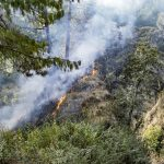 How to Protect Your Home & Property from Wildfires