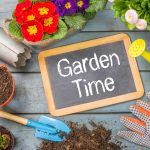 Six Tips to Prepare and Maintain Your Vegetable Garden