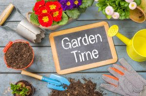 How to prepare and maintain a home garden in Eugene, OR